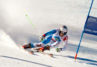 ASPEN, CO - NOV 27: Manuel Pleisch at the FIS NORAM Giant Slalom