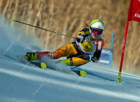 ASPEN, CO - NOV 29: Brittany Phelan at the FIS NORAM Giant Slalo