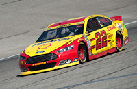 MIAMI, FL - Nov 14: Joey Logano at the Nascar Sprint Cup Ford Ec