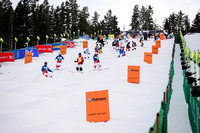DEER VALLEY, UT - January 09: Competitors inspecting the course
