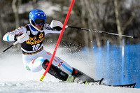ASPEN, CO - November 30: Anna Swenn-Larsson at the Audi FIS Ski