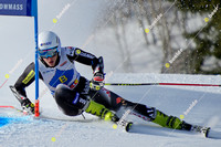 ASPEN, CO - December 1: FIS NORAM CUP mens Giant Slalom race in